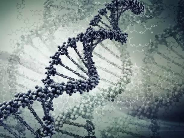 创业公司的基因比商业逻辑更重要