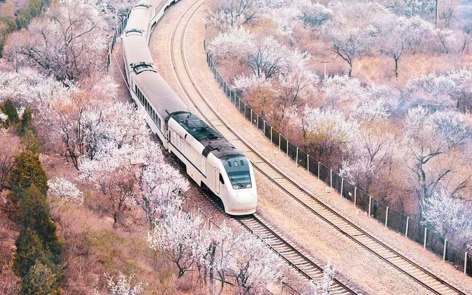 中国经济的转型关键