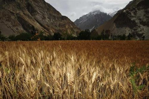 巴基斯坦23:巴基斯坦的农村比中国落后,但比印