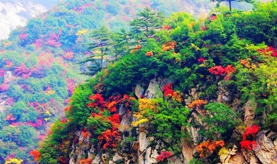 (散文)人生如秋,多姿多彩