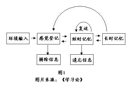 信息加工理论对文科教学的启示 - 杨卫星 - 职业