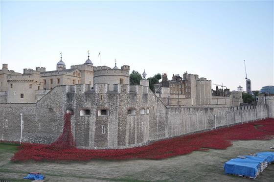"""刘先明在英国赏析伦敦塔的""""罂粟花海"""""""