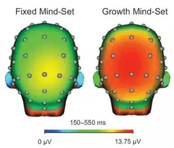 """斯坦福大学教授Dweck谈教育的""""成长型思维 & 固定型思维"""""""