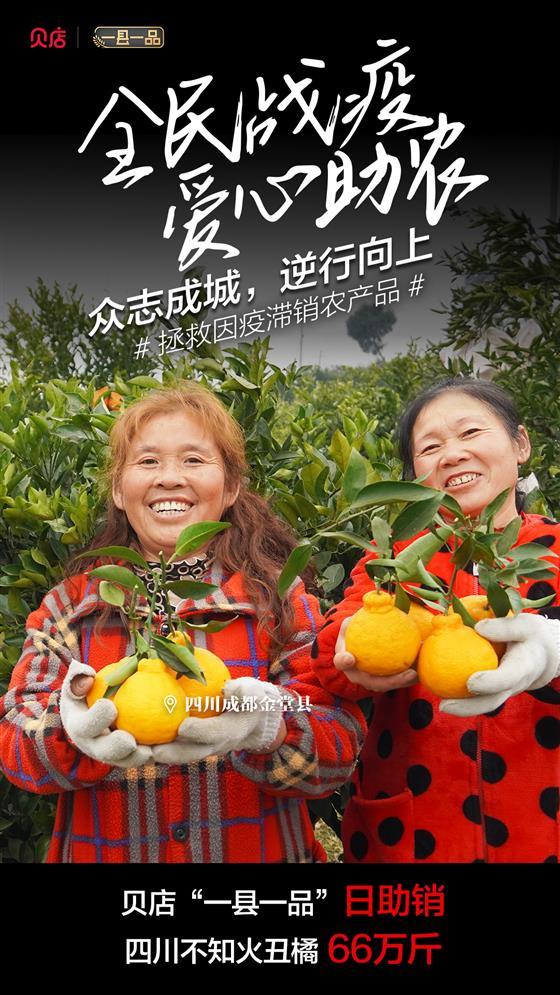 """蔬果""""稳产保供""""压力大?贝店引领农产品助农""""战疫"""""""