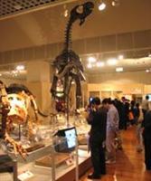 内蒙古博物馆 - 工业与商业图片